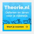 Bekijk details van Theorie-examen rijbewijs oefenen